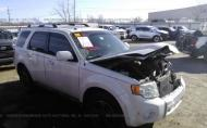 2010 FORD ESCAPE LIMITED #1268419184
