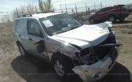2011 FORD ESCAPE XLT #1302300071