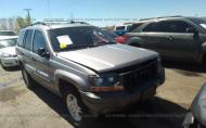 2002 JEEP GRAND CHEROKEE LAREDO #1302304061