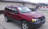 2005 FORD ESCAPE XLT #1318796097