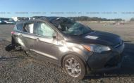 2015 FORD ESCAPE SE #1427888051