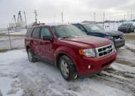 2012 FORD ESCAPE XLT #1447260387
