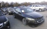 2008 HONDA ACCORD EXL #1463718607