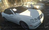 2009 MERCEDES-BENZ CLK 350 #1469315477