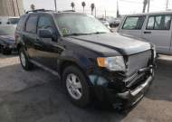 2010 FORD ESCAPE XLT #1580524981