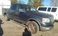 2005 FORD F-150 XLT/LARIAT/KING RANCH #1608193684